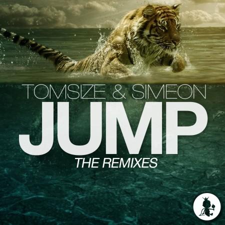 Jump-Remixes-arts